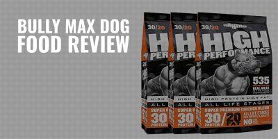 bully max dog food review