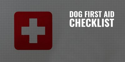 Dog First Aid Checklist – Must-Have First-Aid Supplies for Dogs