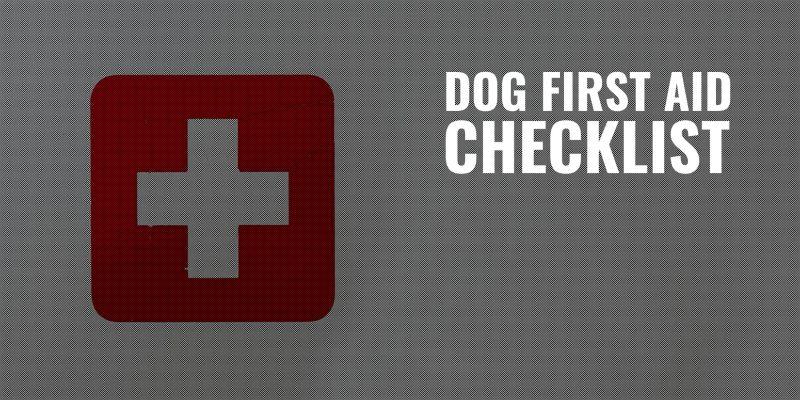 dog first aid checklist