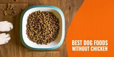10 Best Dog Foods Without Chicken