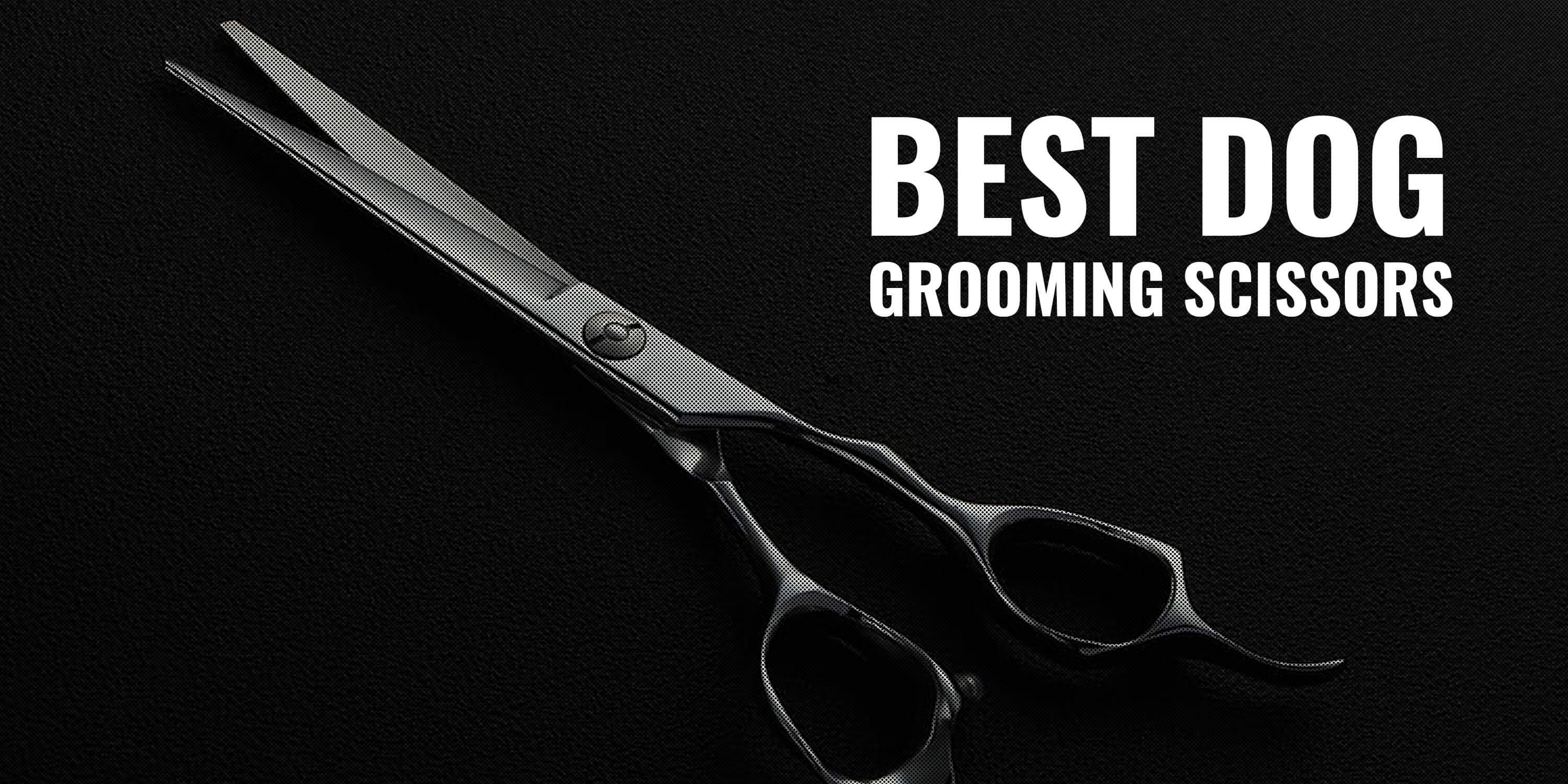 6.5 Inch Curved Scissors Use Curved Shears for Cat Shears and Small Dog Shears Or Any Breed Trimming Cuts Sharf Gold Touch Grooming Pet Shear