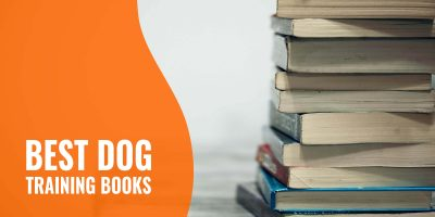 10 Best Dog Training Books – Positive Reinforcement, Tricks & Obedience