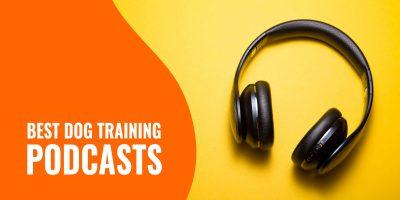 10 Best Dog Training Podcasts