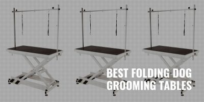 best folding dog grooming tables
