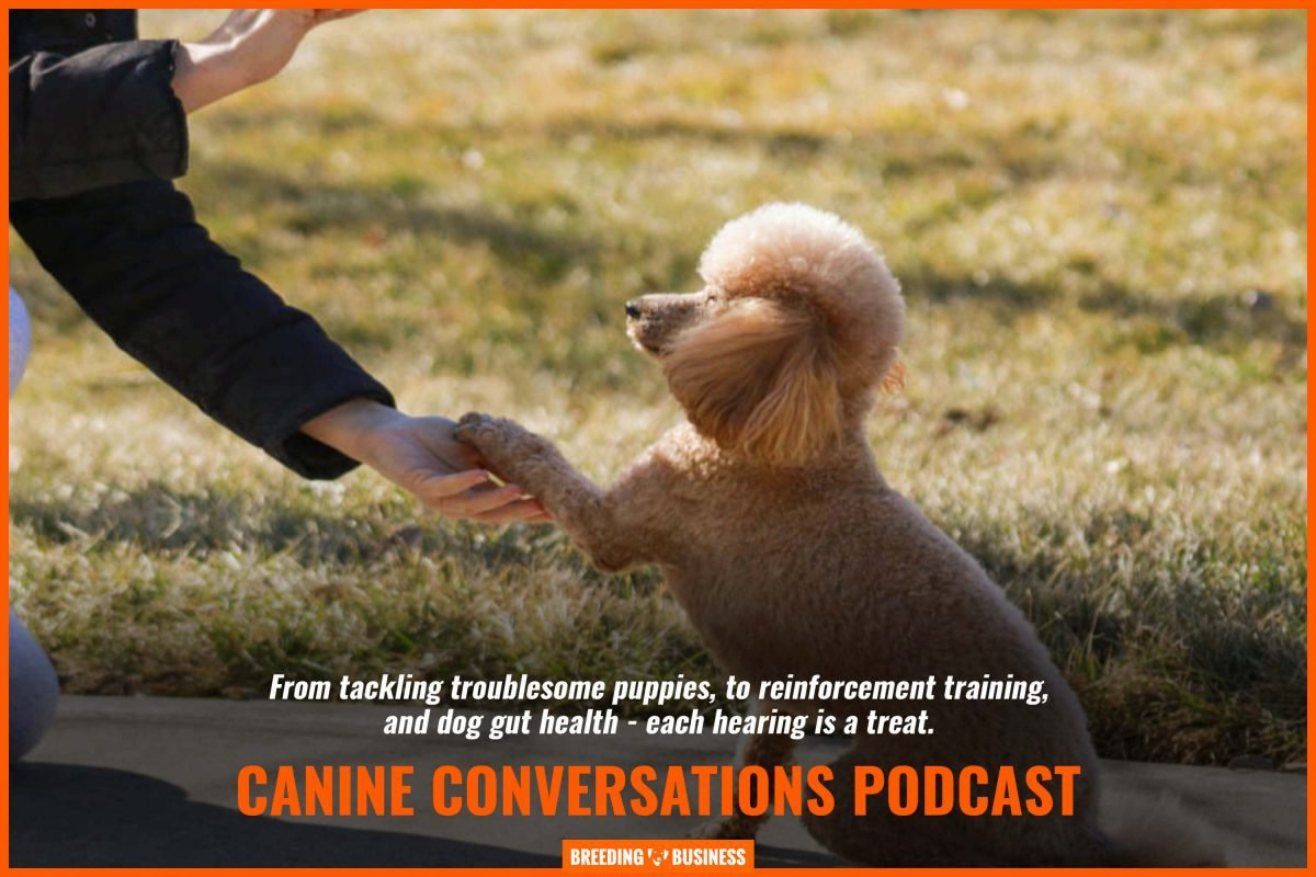 canine conversations podcast