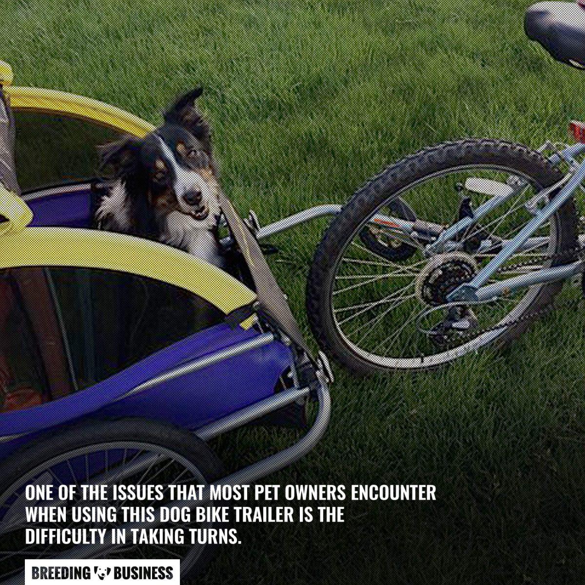 dog bike trailer issue
