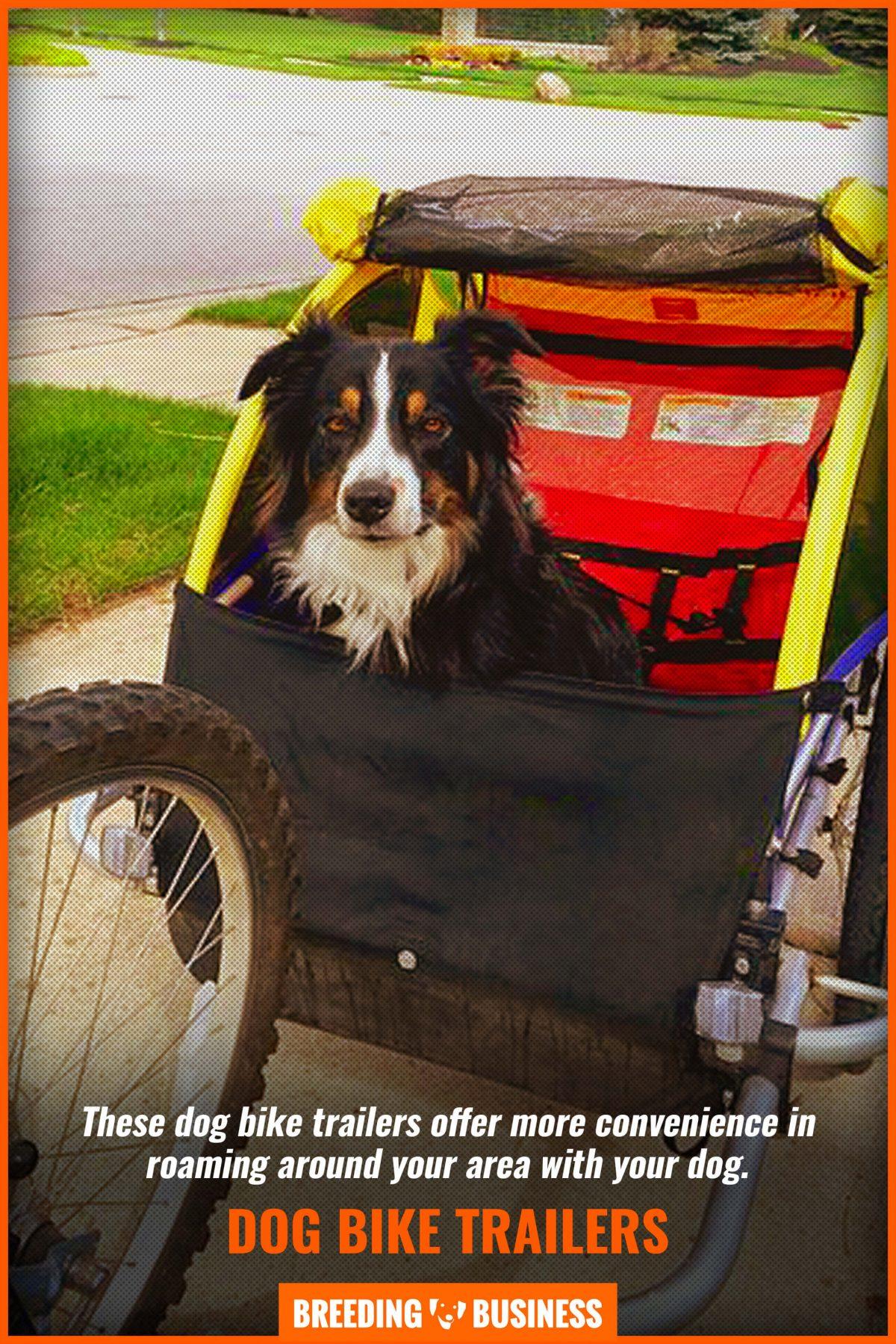 dog bike trailers