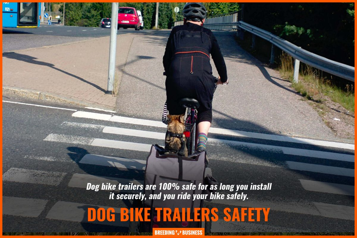 dog bike trailers safety