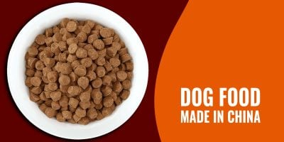 Dog Food Made in China – Controversy, Melamine, Risks, Brands & FAQs