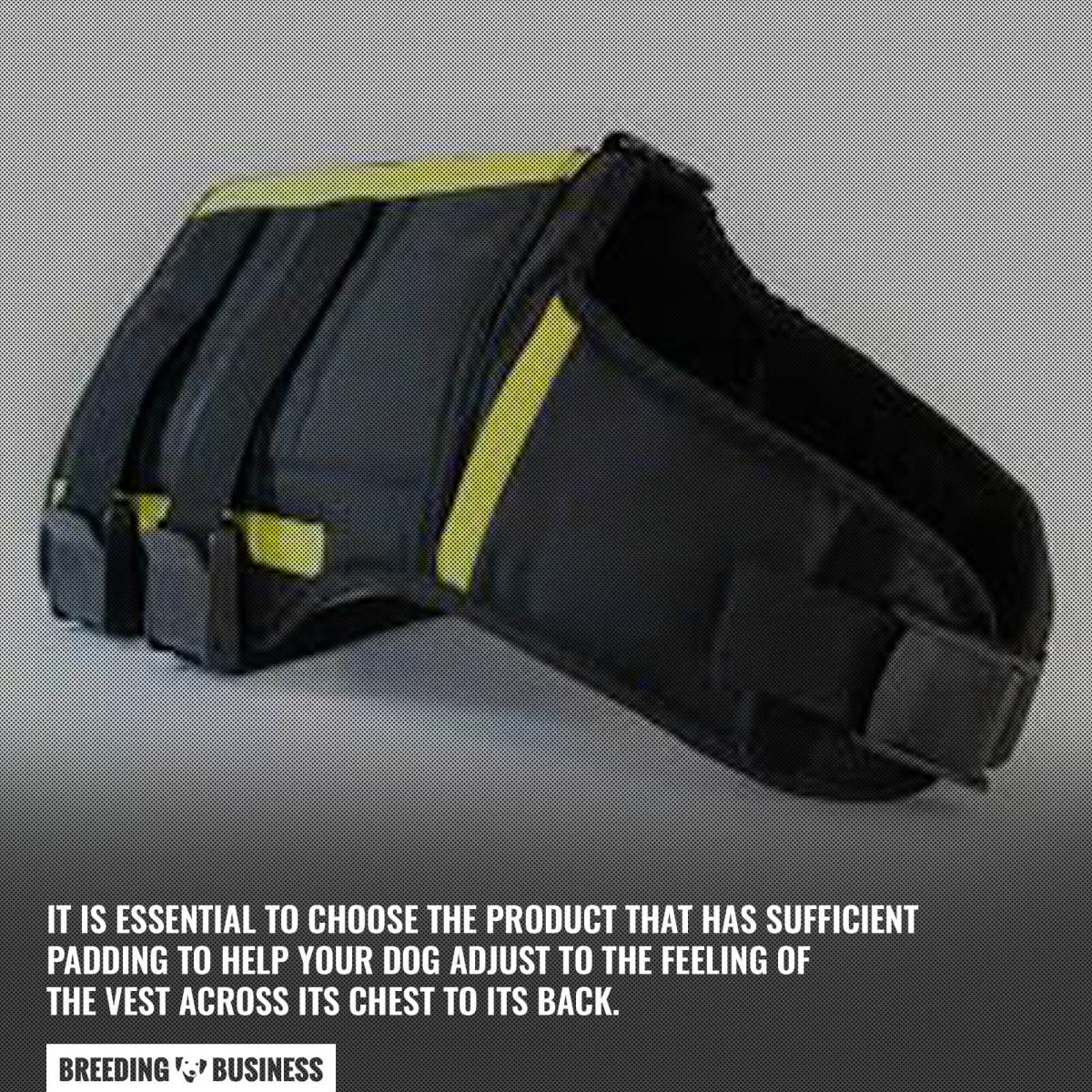 dog weighted vests padding