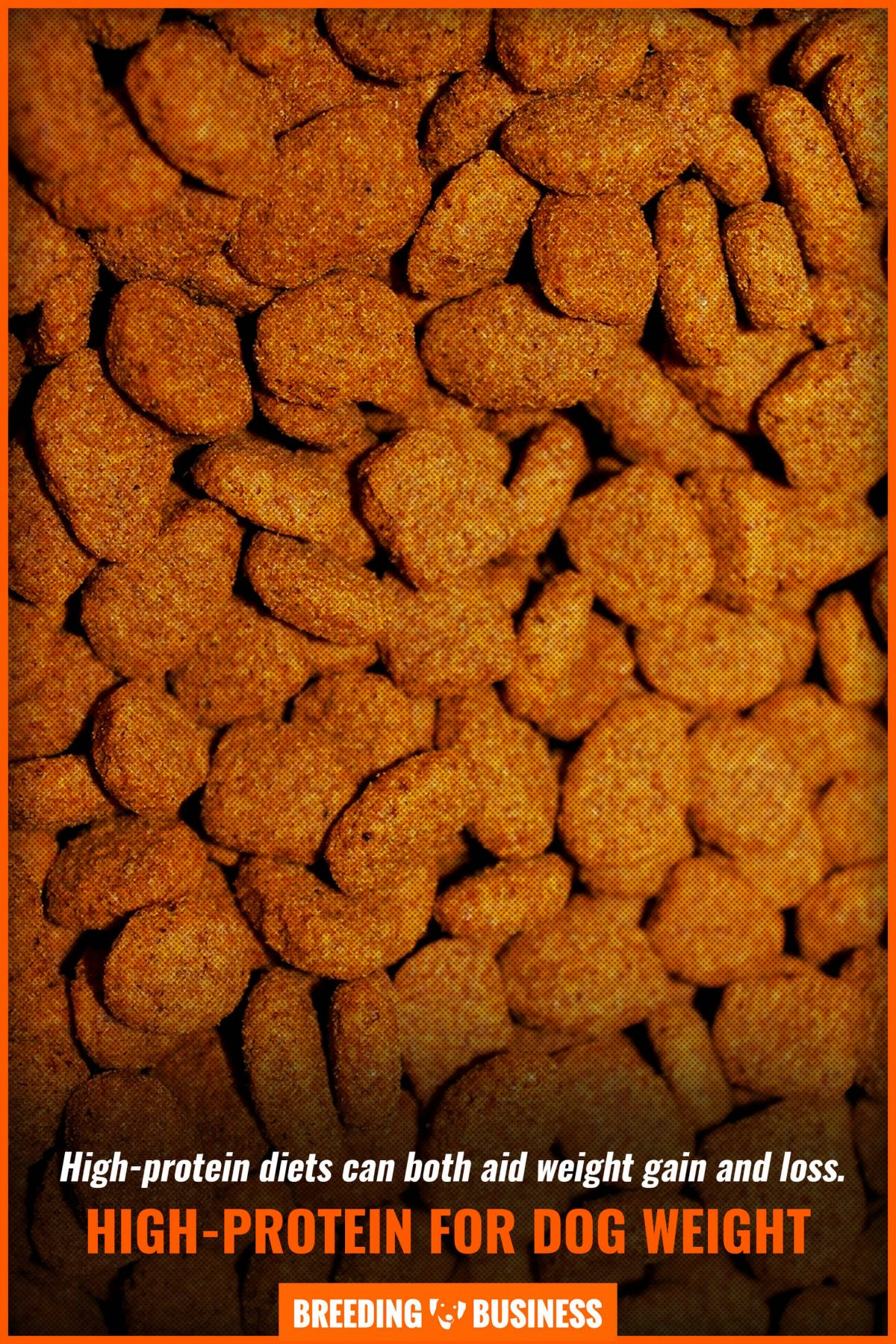 high-protein for dog weight