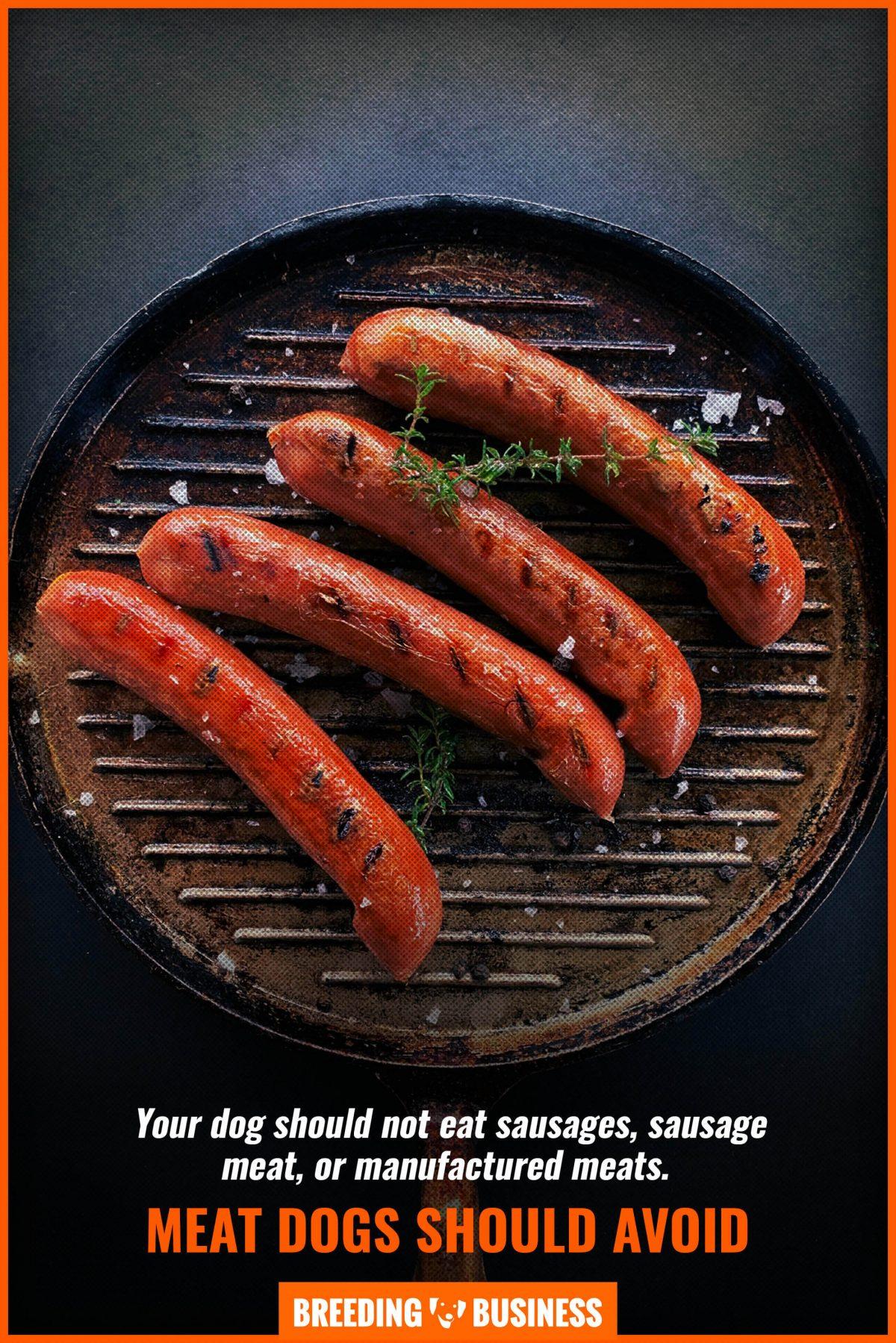 meat dogs should avoid