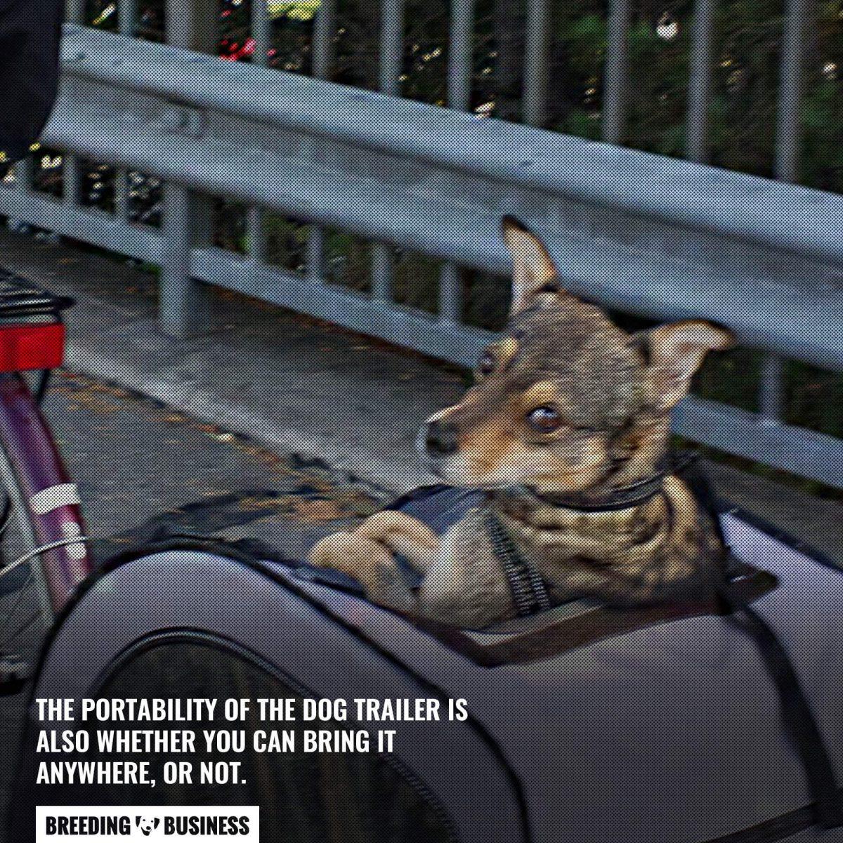 portability of the dog trailer