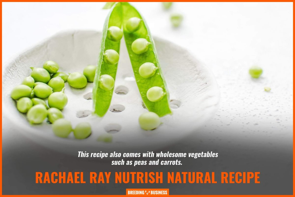 rachael ray nutrish natural recipe