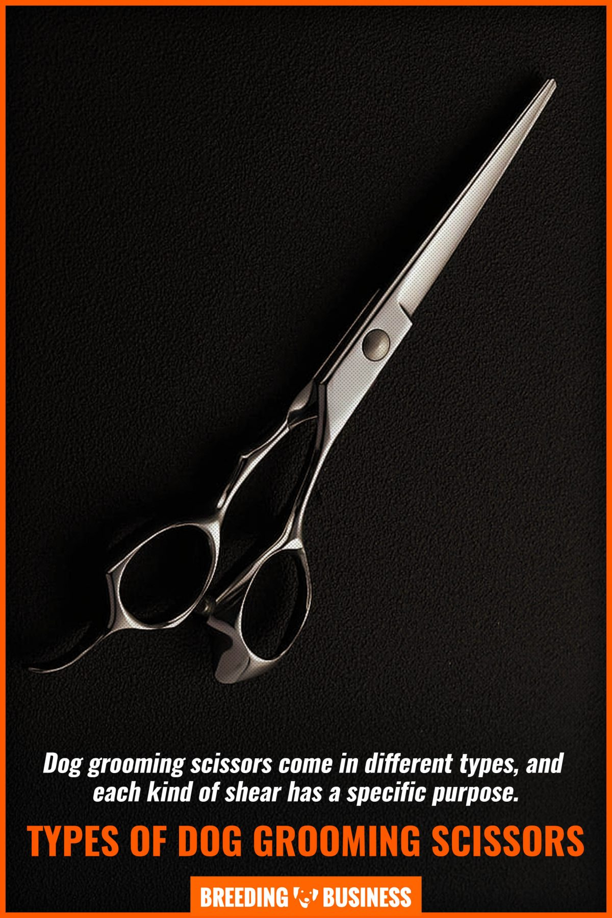 types of dog grooming scissors