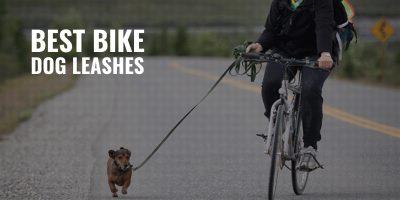 best bike dog leashes