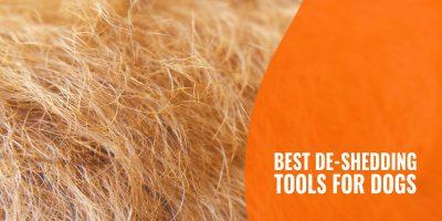 10 Best De-shedding Tools for Dogs