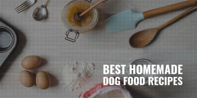 50 Best Homemade Dog Food Recipes