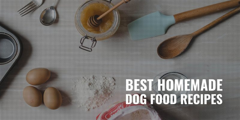 50 Best Homemade Dog Food Recipes Ingredients Directions Faqs