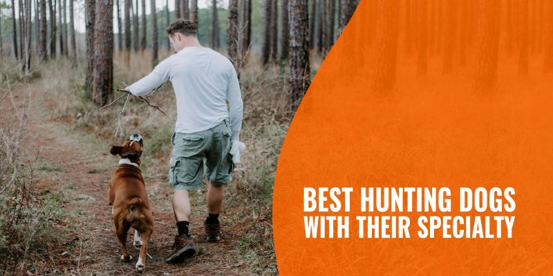 best hunting dogs with their specialty