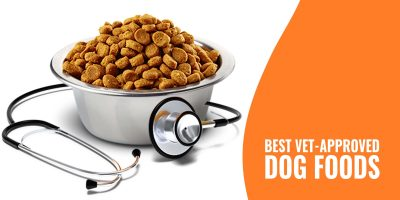 best vet approved dog foods
