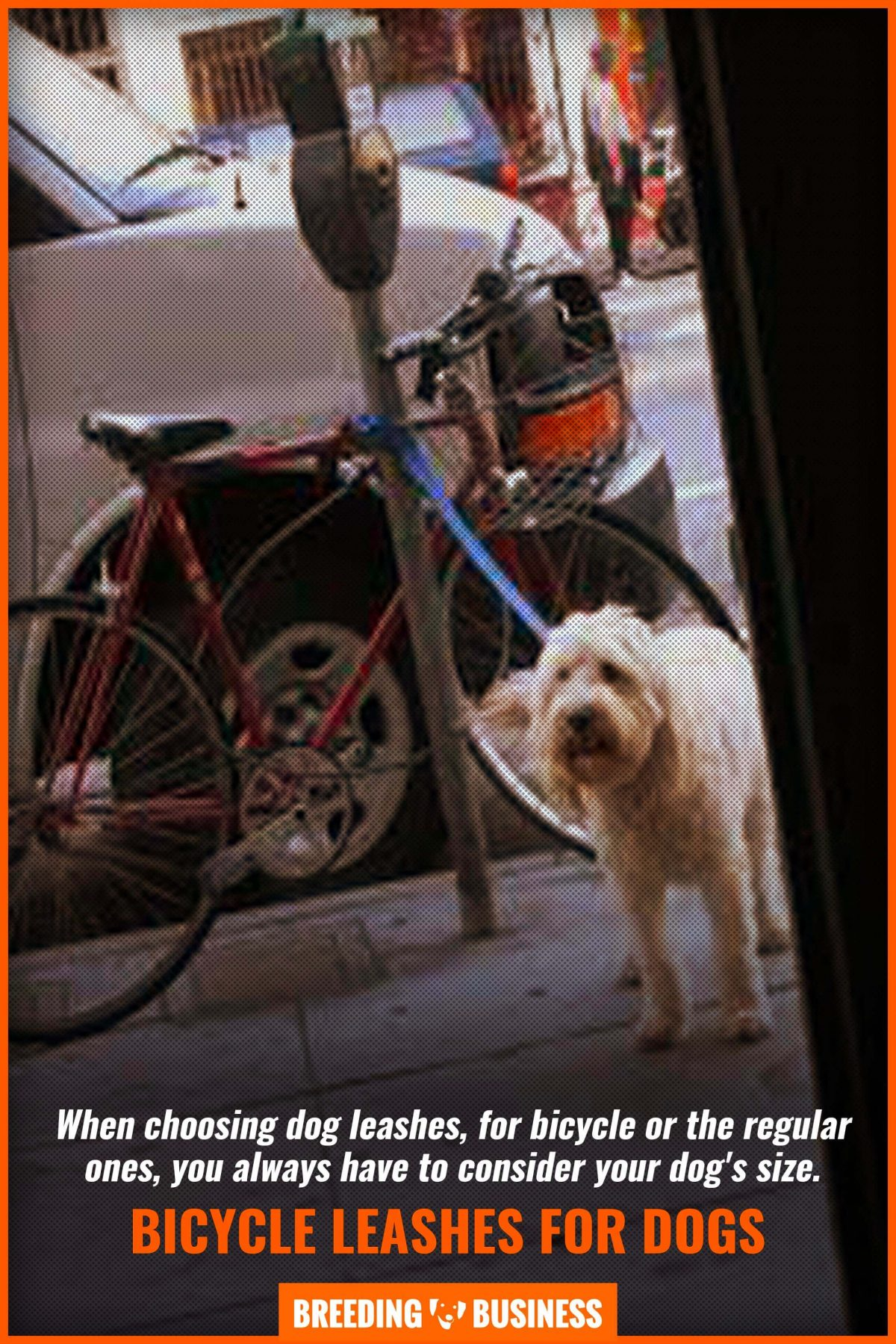 bicycle leashes for dogs