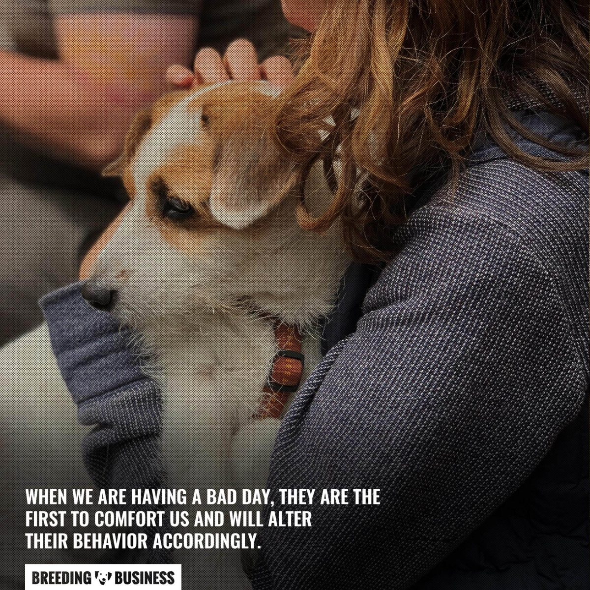 dogs have empathy for us