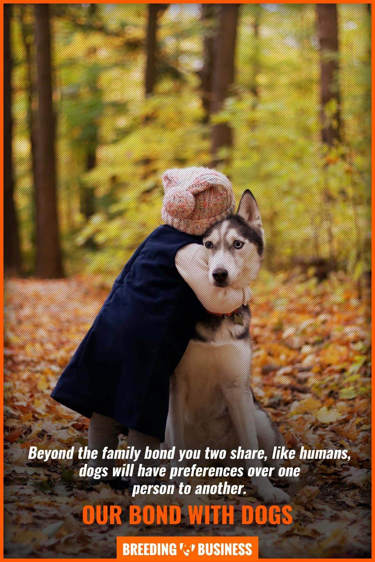 our bond with dogs