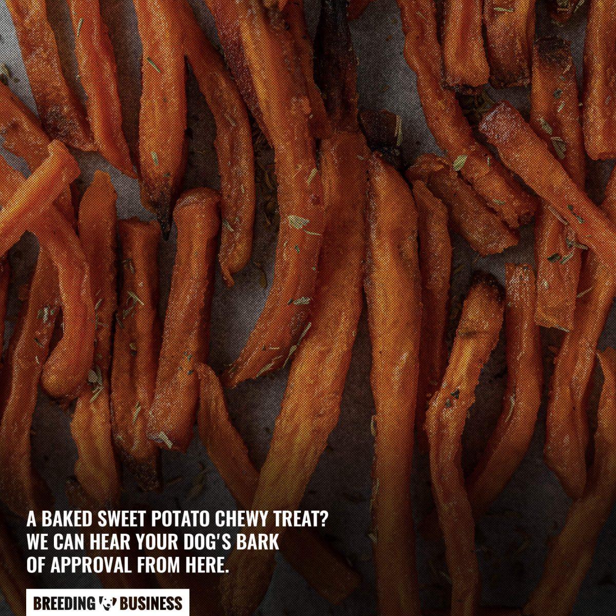 sweet potato dog chews