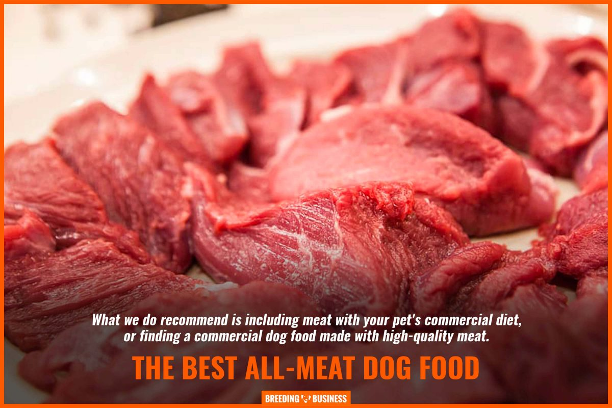 the best all-meat dog food