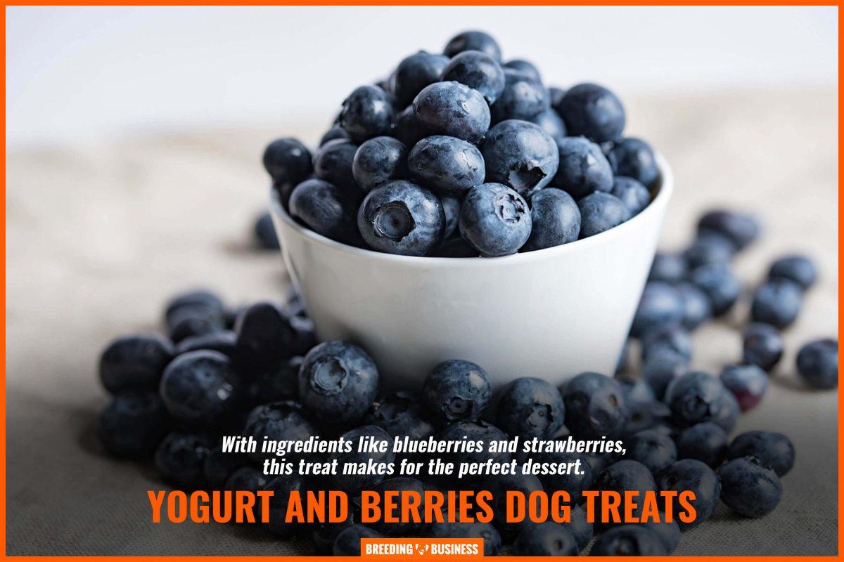 yogurt and berries dog treats
