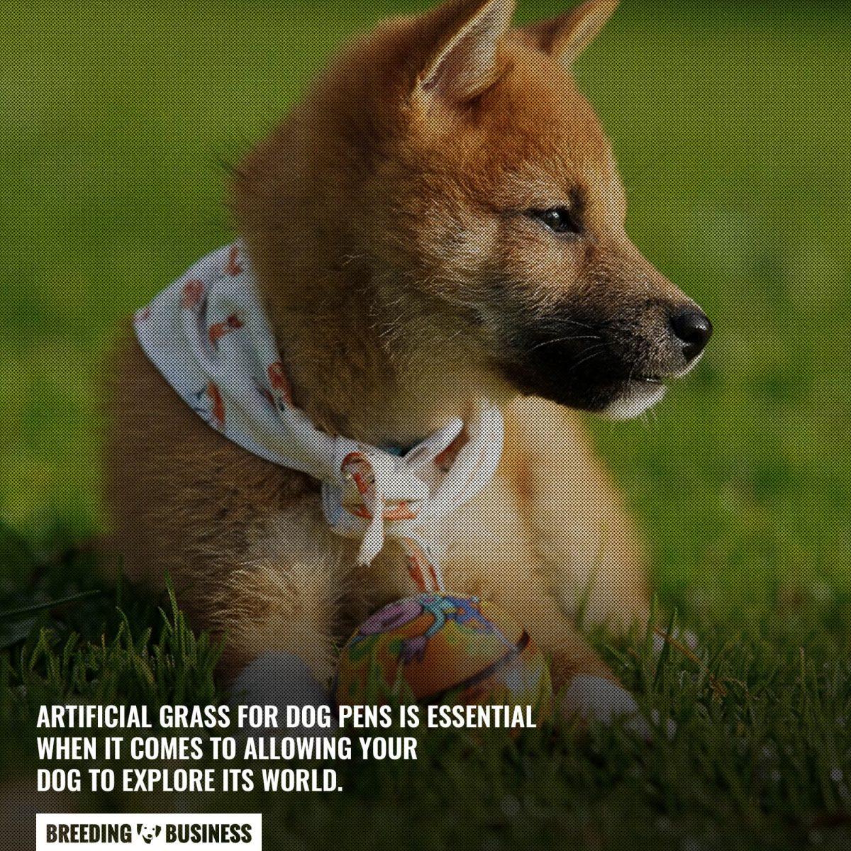 artificial grass for dog pens