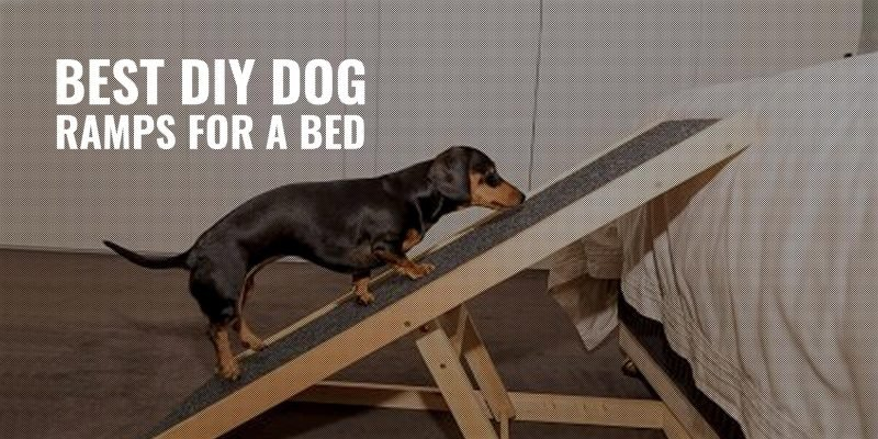 best diy dog ramps for a bed