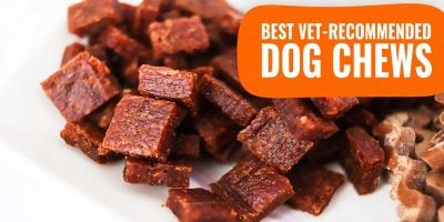 best vet recommended dog chews
