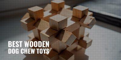 10 Best Wooden Dog Chew Toys