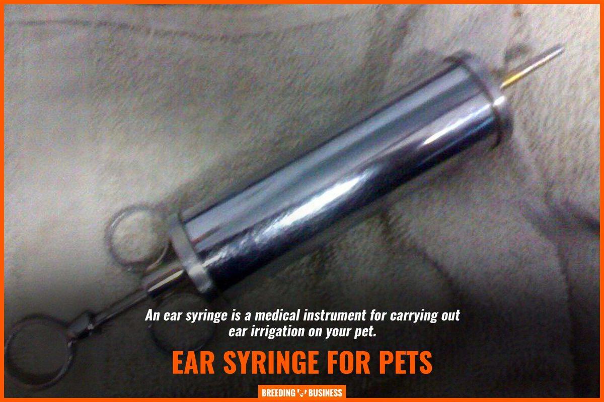 ear syringe for pets