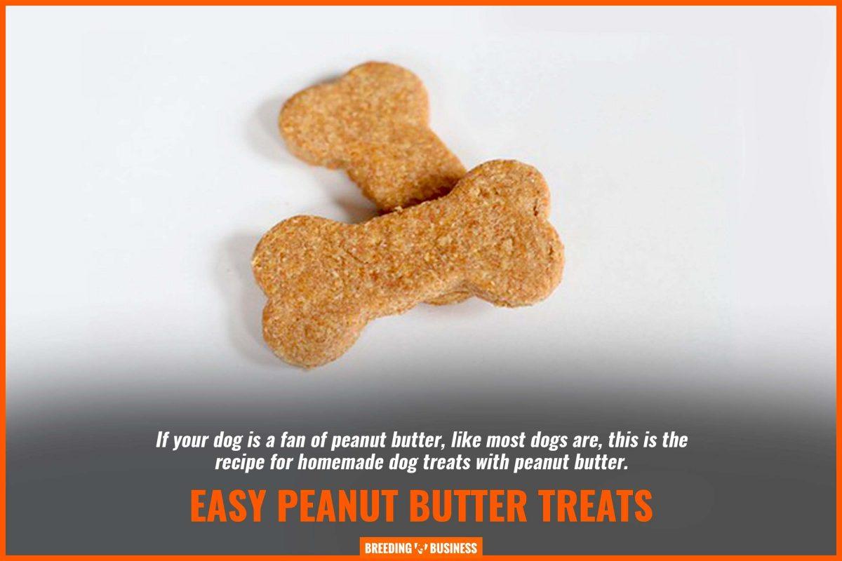 easy peanut butter treats