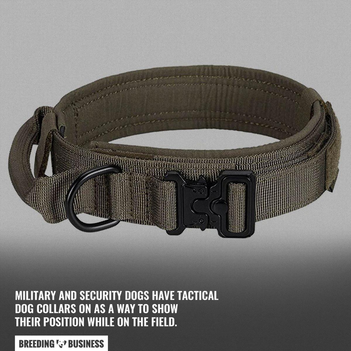 military security tactical dog collar