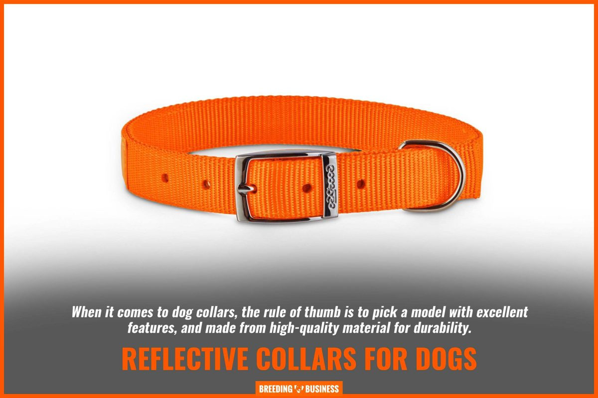 reflective collars for dogs