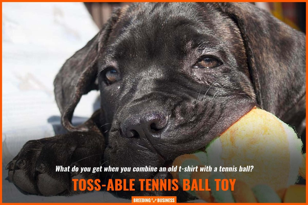 toss-able tennis ball toy