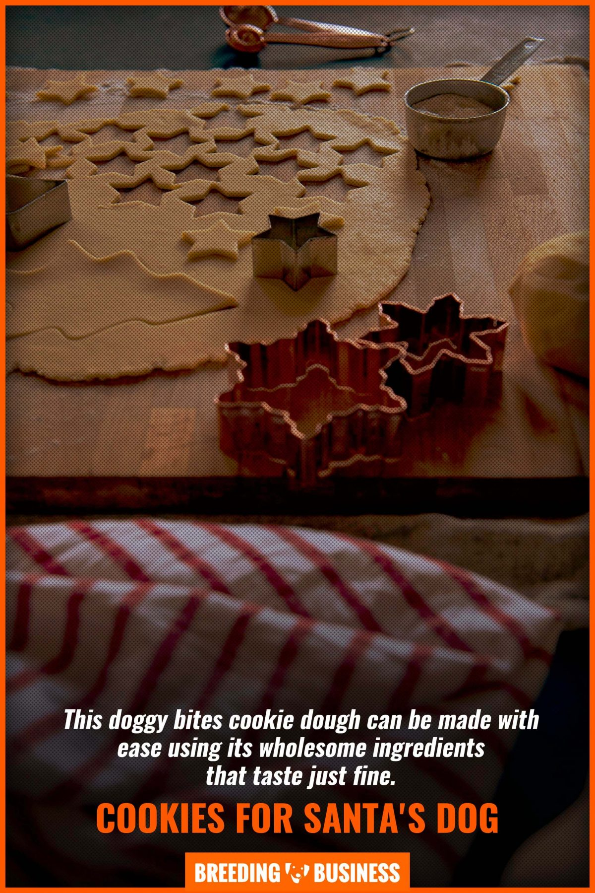 cookies for santas dog