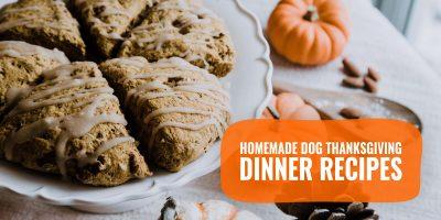 20 Homemade Dog Thanksgiving Dinner Recipes