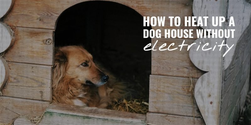 how to heat up a dog house without electricity