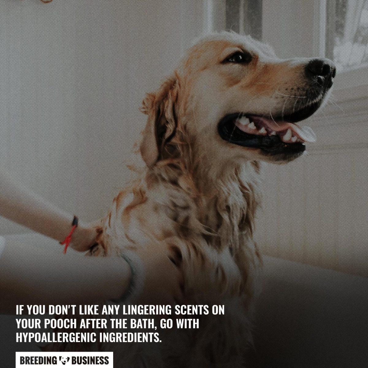 hypoallergenic dog shampoo ingredients