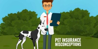 Pet Health Insurance Misconceptions