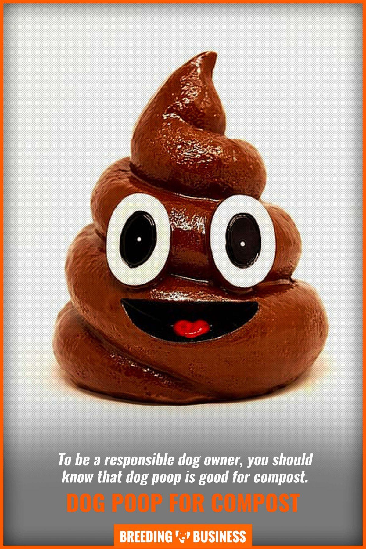 dog poop for compost