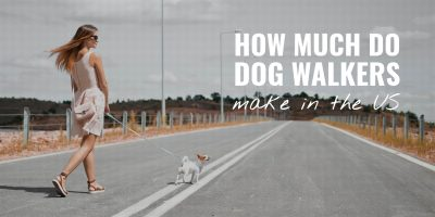 how much do dog walkers make in the us