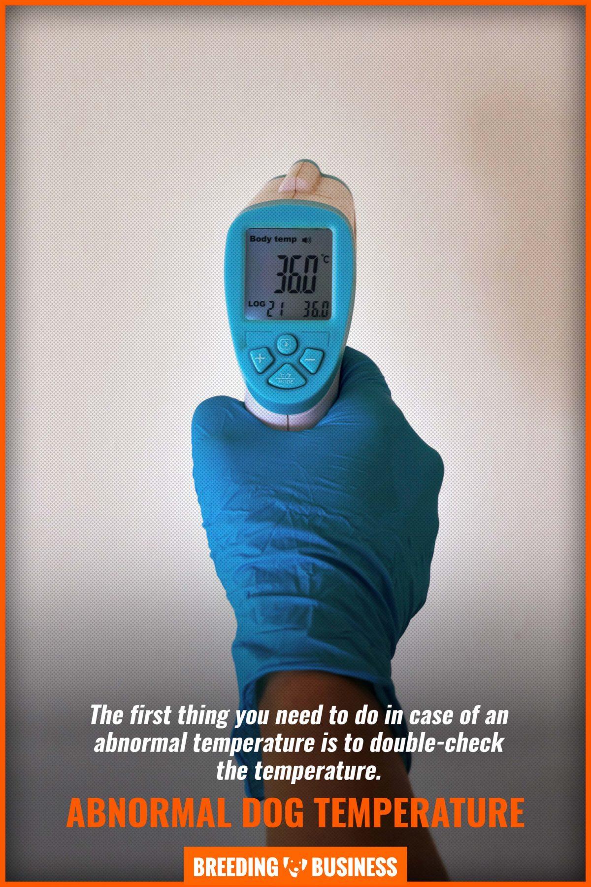 abnormal dog temperature