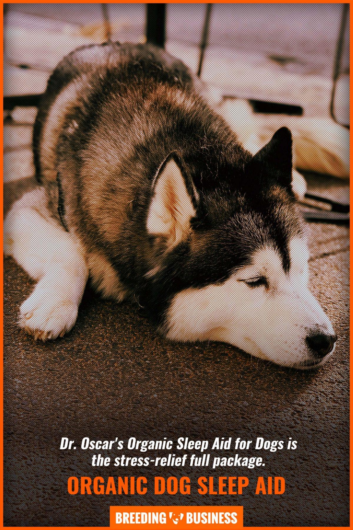 organic dog sleep aid
