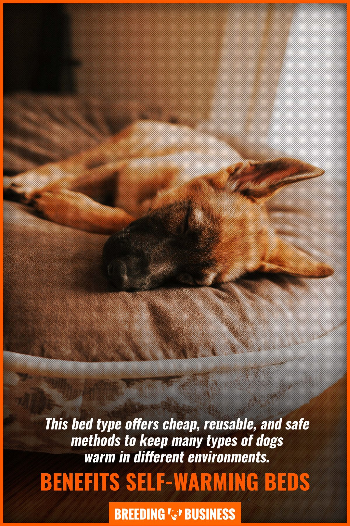 benefits self-warming beds
